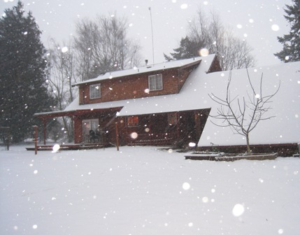 snowy-back-yard.jpg