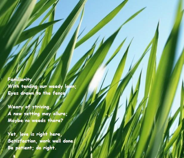 grass-is-greener-haiku.jpg