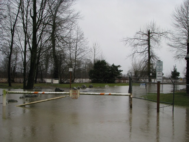 flooded-riverside-park