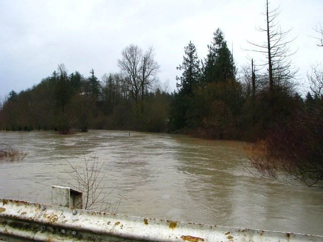 sumas-river-looking-east-on-gillies-and-alm