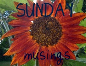 sunflower-sunday-musings1