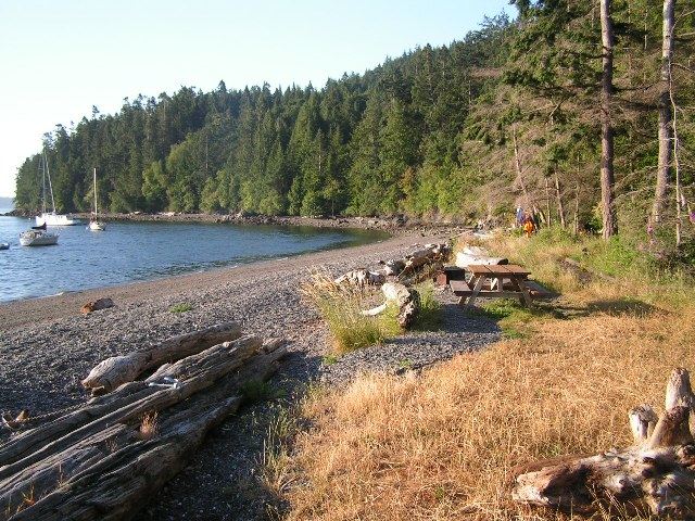 pelican beach on cypress island