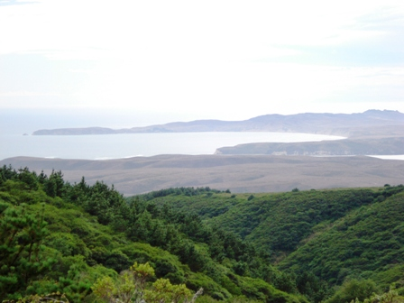 tomales bay from a distance